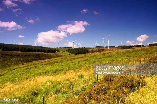 view of wind turbines - nigel owen stock pictures, royalty-free photos & images