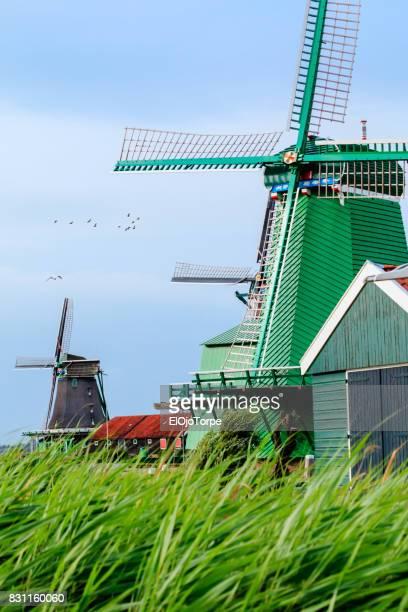 View of windmills in Zaanse Schans, Zaandam, Netherlands