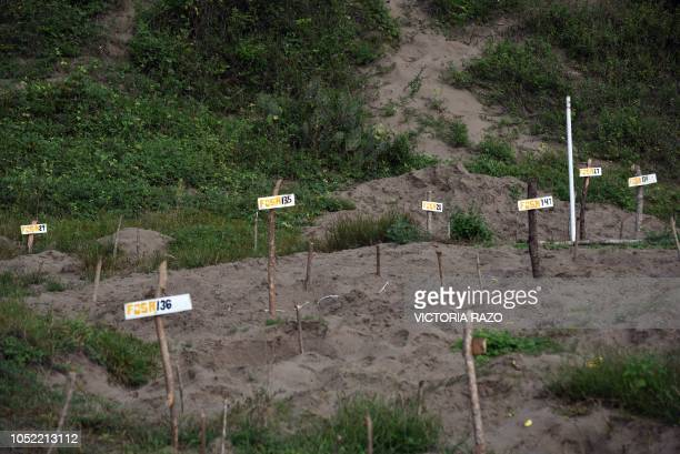 View of wood signs showing clandestine graves located in the Colinas de Santa Fe property where 296 skulls along with multiple human remains were...
