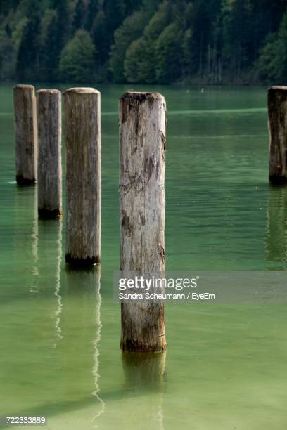 View Of Wooden Posts In Water