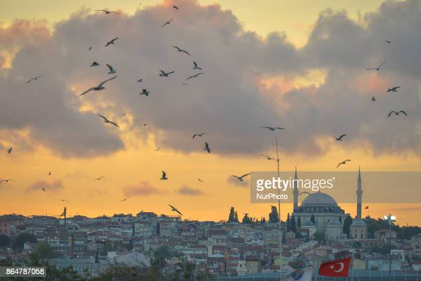 A view of Yavuz Sultan Selim Mosque and the area around at sunset On Tuesday 17 October 2017 in Istanbul Turkey