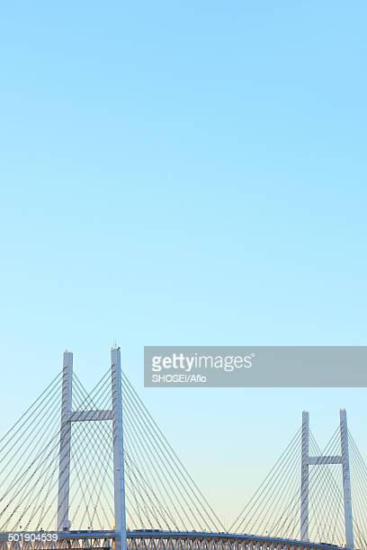 view of yokohama, kanagawa prefecture, japan - human artery stock photos and pictures