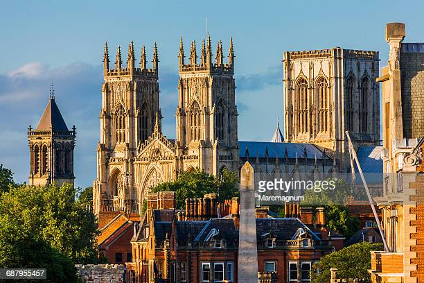 view of york minster (cathedral) from the walls - york yorkshire stock pictures, royalty-free photos & images