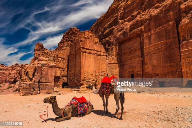 View on ancient tombs and camels in Petra, Jordan.