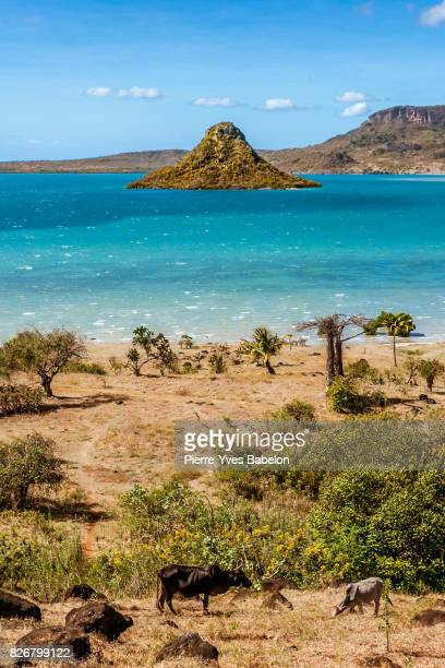 view on antsiranana bay - pierre yves babelon madagascar stock pictures, royalty-free photos & images