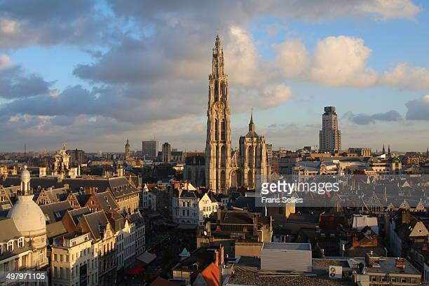 View on Antwerp and the cathedral