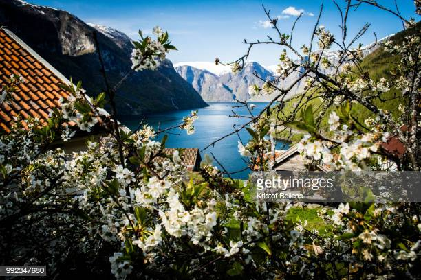 View on Aurlandsfjord from Otternes, Norway