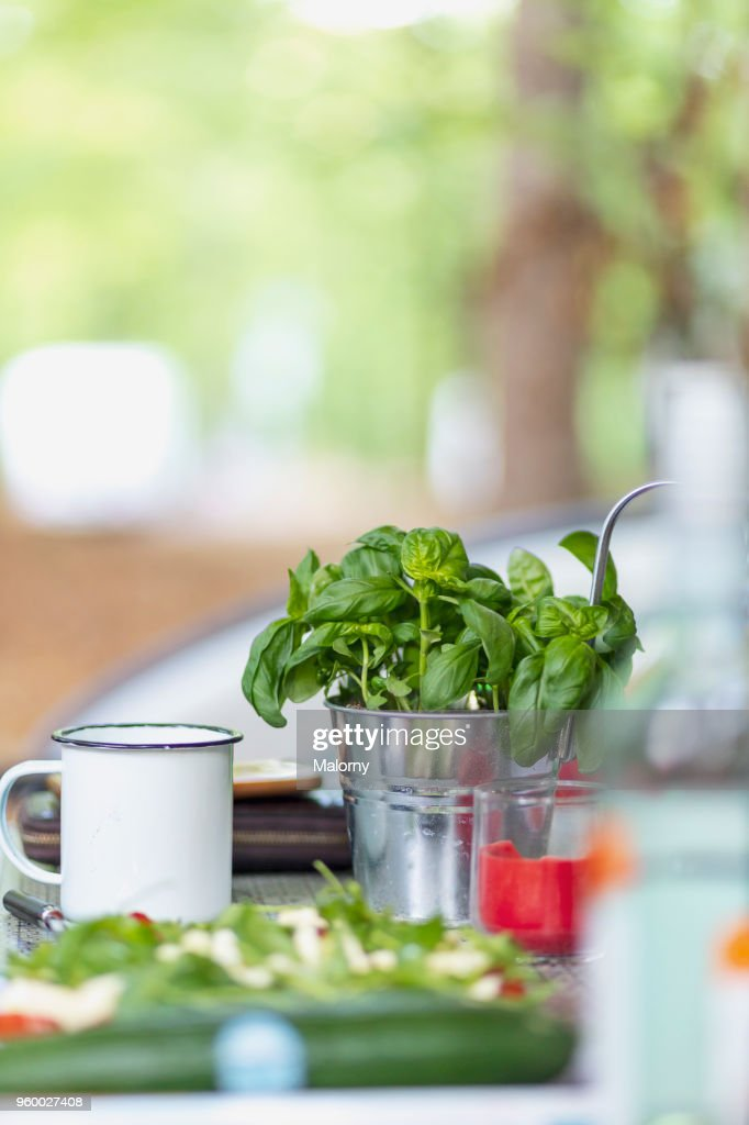 View on camping table with salad and fresh basil. Germany, Bavaria, Lake Sylvenstein : Stock-Foto