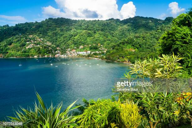 view on charlotteville's bay from the fort cambleton, charlotteville, tobago, trinidad and tobago, west indies, south america - paisajes de trinidad tobago fotografías e imágenes de stock