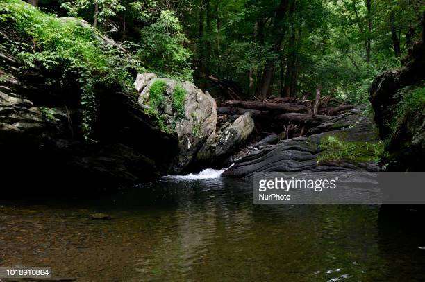 View on Devils Pool in the Wissahickon Valley in Philadelphia PA on August 18 2018 Locals find the illegal swimming spot closed by authorities due to...