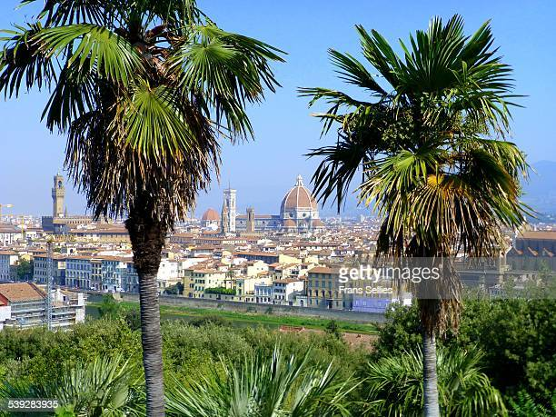 view on florence, tuscany - frans sellies stockfoto's en -beelden