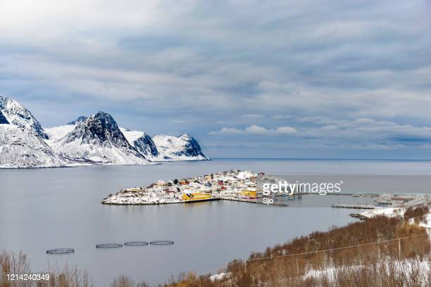 "view on husøy, senja fishing village  in øyfjorden in winter - ""sjoerd van der wal"" or ""sjo"" stock pictures, royalty-free photos & images"