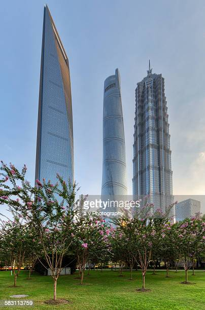 view on jin mao tower and shanghai tower - andre vogelaere stock pictures, royalty-free photos & images