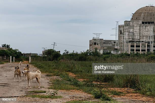 View on Juragua Nuclear Power Plant in Cuba