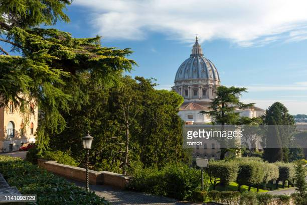 view on papal basilica of st. peter dome among the tree branches of vatican gardens, rome, italy. - gardens of vatican city stock photos and pictures