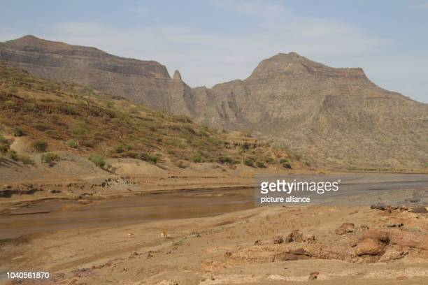 View on the dry landscape on the way from the North Ethiopian Sekota to the village of Mesheha in the district of Sehala Ethiopia 5 June 2016 It...