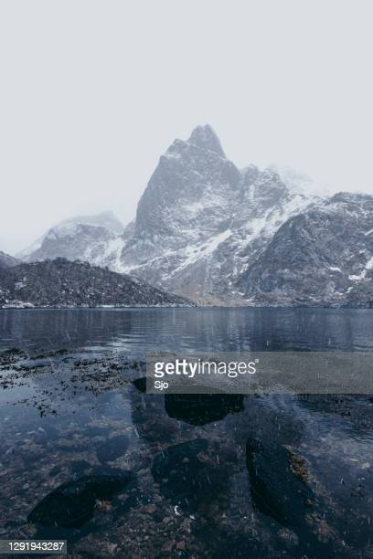 """view on the malnessfjord on the vesteralen island in norway during winter. - """"sjoerd van der wal"""" or """"sjo"""" stock pictures, royalty-free photos & images"""