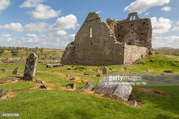 View on the ruins of St. Nicholas's Church, at The Lost Town of Newtown Jerpoint, County Kilkenny, Province of Leinster, Ireland