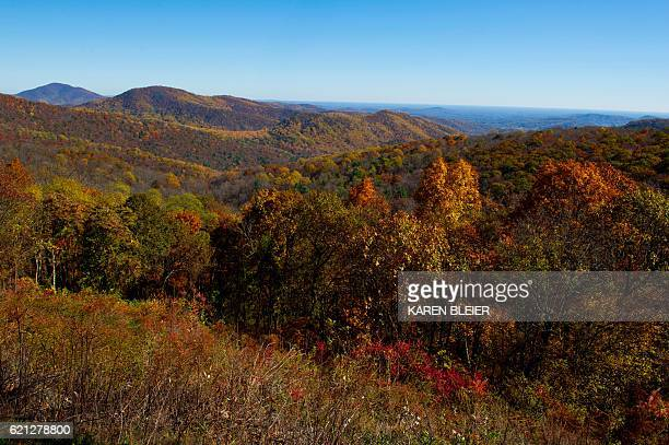 A view out over the piedmont from Skyline Drive in the Shenandoah National Park in Virginia November 5 2016 / AFP / Karen BLEIER