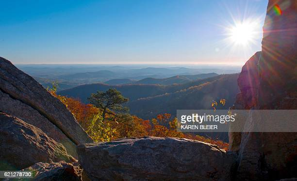 A view out over the piedmont from Skyline Drive on a Fall day in the Shenandoah National Park in Virginia November 5 2016 / AFP / Karen BLEIER