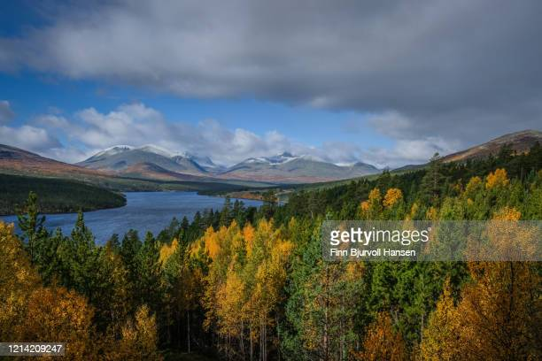 view over a lake and mountains atø rondane norway - finn bjurvoll stock pictures, royalty-free photos & images