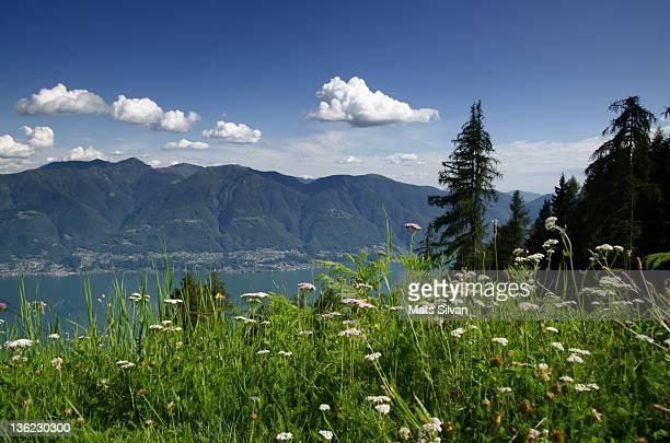 View over alps and alpine lake