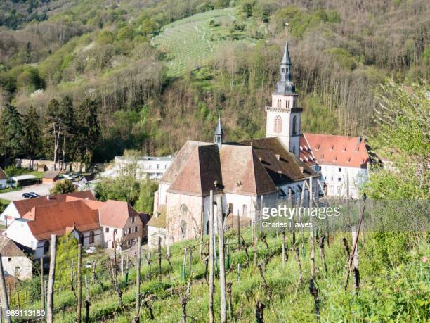View over Andlau from vineyards. Images taken in the Alsace Region of France between Andlau and Obernai