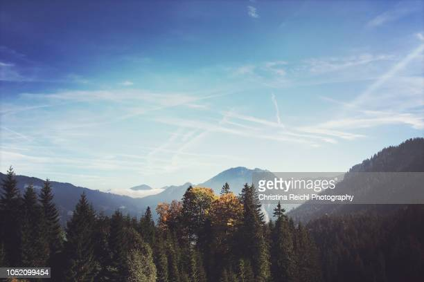 view over bavarian alps on an autumn day - wonderlust stock photos and pictures