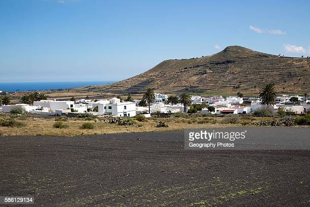 View over cactus black soil field and whitewashed houses village of Maguez Lanzarote Canary Islands Spain