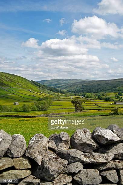 view over dry stone wall down valley - liz vega fotografías e imágenes de stock