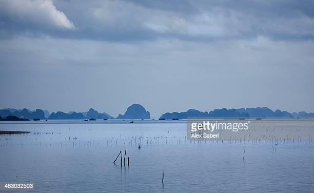 a view over halong bay at sunrise. - alex saberi fotografías e imágenes de stock