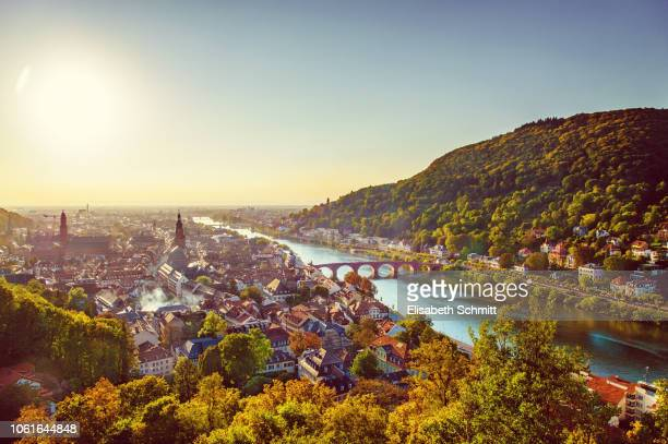 view over heidelberg with river neckar - heidelberg stock photos and pictures