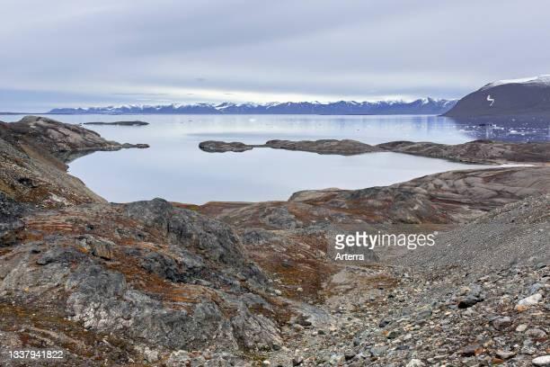 View over Hornbaekpollen. Hornb¾kpollen, small bay at Liefdefjorden, east of Erikbreen, Haakon VII Land in summer, Spitsbergen, Svalbard, Norway.