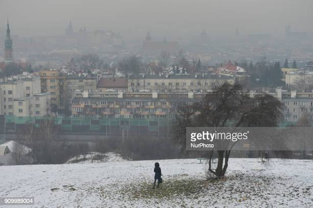 A view over Krakow's Old Town seen from Krakus Mound during a smog alert on January 24 as the air pollution in many parts of the city of Krakow still...