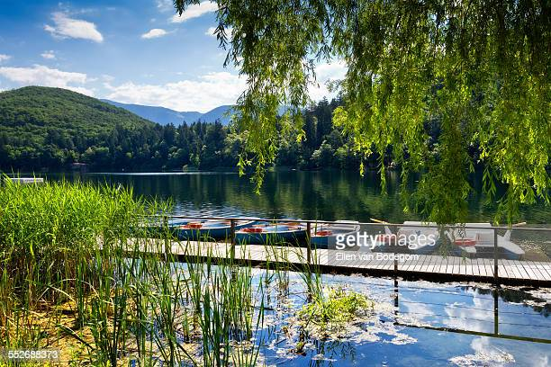 view over montiggler lake with rowing boats - eppan stock photos and pictures
