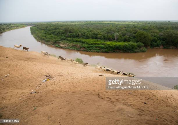View over Omo river from the top of the bank Omo valley Korcho Ethiopia on June 11 2017 in Korcho Ethiopia