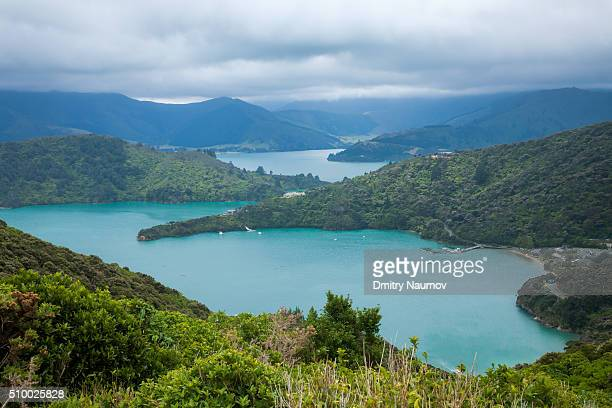 View over Portage Bay  from the Queen Charlotte Track in Marlborough Sounds New Zealand