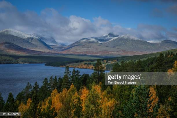 view over rondane norway - finn bjurvoll stock pictures, royalty-free photos & images