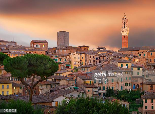 view over rooftops towards piazza del campo. - campo stock pictures, royalty-free photos & images