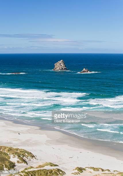 view over sandfly bay, otago peninsula, dunedin - otago photos et images de collection