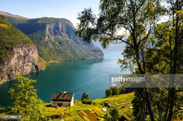 """uitzicht over de aurlandsfjord in noorwegen tijdens een mooie zomerdag - """"sjoerd van der wal"""" or """"sjo""""nature stockfoto's en -beelden"""