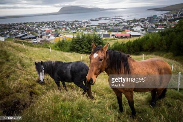 A view over the country's capital Torshavn on September 04 2018 in Torshavn The Faroe Islands