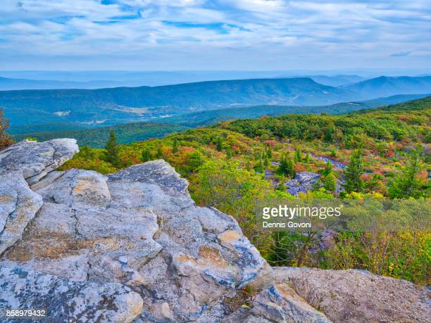 view over the edge - monongahela national forest stock photos and pictures