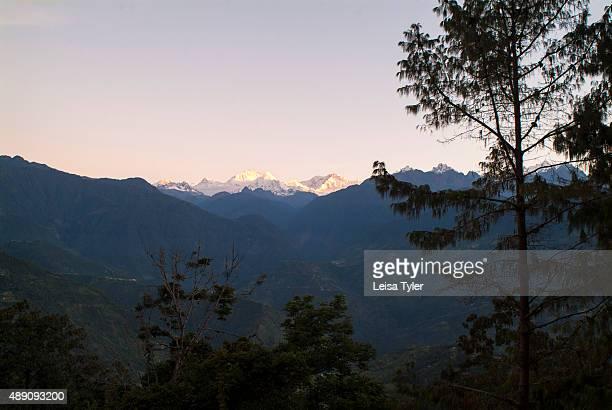 View over the Himalaya and Kanchenjunga the world's third highest mountain from Glenburn Tea Estate near Darjeeling India