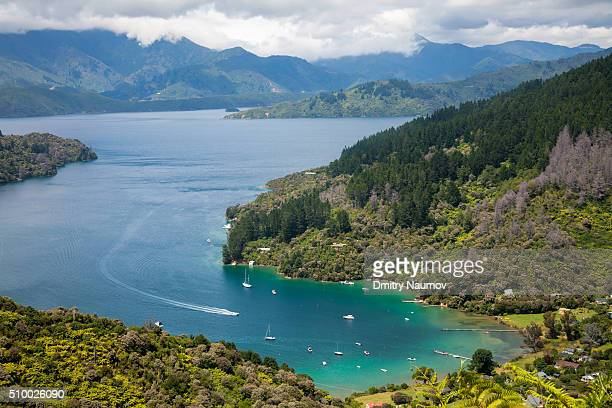 view over the kenepuru sound from the queen charlotte track new zealand - marlborough new zealand stock pictures, royalty-free photos & images