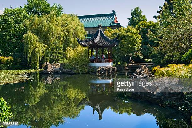 view over the lake in a classical chinese garden, - chinatown stock pictures, royalty-free photos & images