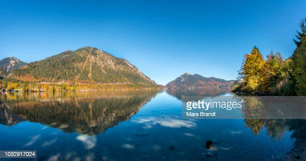 View over the lake with Jochberg and Herzogstand in autumn, water reflection, Walchensee, Upper Bavaria, Bavaria, Germany