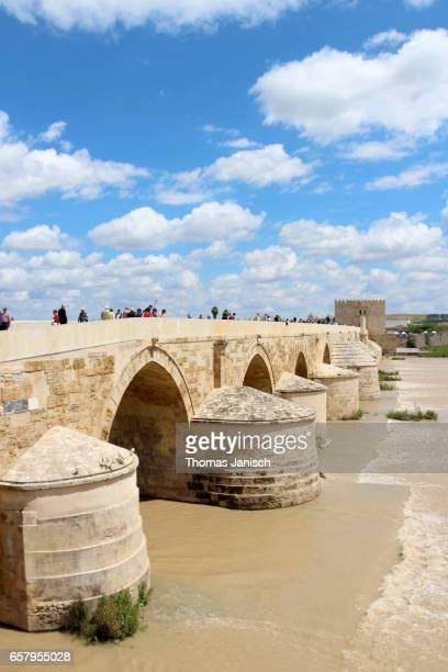 View over the Puente Romano (Roman Bridge) of Córdoba