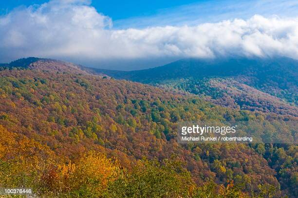 view over the shenandoah national park with beautiful foliage in the indian summer, virginia, united states of america, north america - shenandoah_national_park stock pictures, royalty-free photos & images