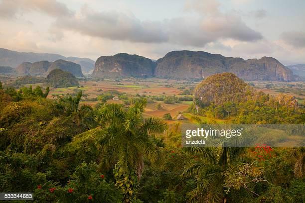 blick über vinales valley in kuba - valle de vinales stock-fotos und bilder